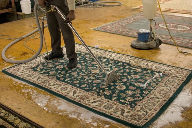 Learn about the best company that you can hire for Rug Washing in Gold Coast