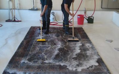 Key reasons to hire the frequent services of rug washing in Brisbane