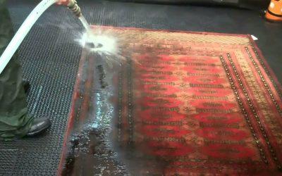 Rug washing Brisbane